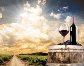 Vin stilleben mot vingård — Stockfoto