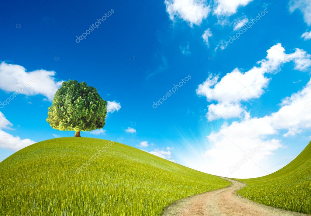 A way in the green landscape — Stock Photo #11016477