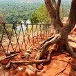 The view from Sigiriya (Lion's rock) is an ancient rock fortress — Stock Photo #11724498