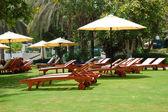 Green lawn at the beach of luxury hotel, Jumeirah, Dubai, UAE — Stock Photo