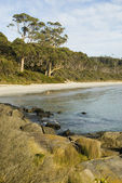 Fortescue Bay — Stock Photo