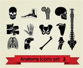 Anatomi icons set 2 — Stok Vektör