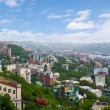 Vladivostok. Panorama of the Golden Horn - Stock Photo