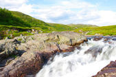 Landskap av polar sommaren tundran — Stockfoto