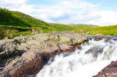 Landscape of the polar summer tundra — Stock Photo