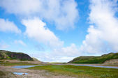 Krajobraz tundry polarne lato — Zdjęcie stockowe