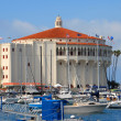 Catalina Island Casino — Stock Photo #11615454