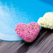Flower hearts near swimmong pool — Stock Photo #11215003