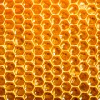 Fresh honey in comb - 图库照片