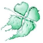 Клевер с 4 листья из воды всплеск — Стоковое фото