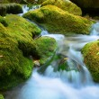 Cascade falls over mossy rocks - Stock fotografie