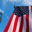 American flag - Foto Stock