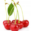 Bunch of wet ripe cherry berries with green leaf isolated — Stock Photo