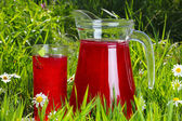 Glass and Jug of fruit water over green grass — Stock Photo