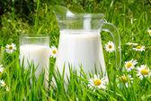 Jarra y vaso de leche sobre la hierba verde — Foto de Stock