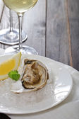 Fresh oysters and wine — Stock Photo