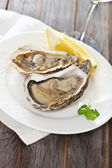 Fresh oysters — Stock Photo