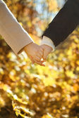 Young couple holding hands in the autumn forest — Stock Photo