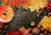 静物与秋天的树叶 — 图库照片