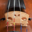 Violin background — Stock Photo #11830517