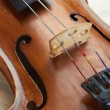 Violin background — Stock Photo #11830530