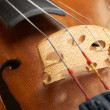 Violin background — Stock fotografie