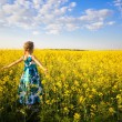 Stock Photo: Girl in rape field