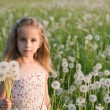 Little girl with dandelion — Stock Photo #11161588