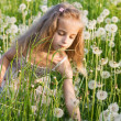 Stock Photo: Little girl with dandelion