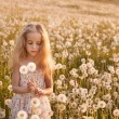 Little girl with dandelions — Stock Photo #11161677