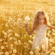 Little girl with dandelions — Stock Photo #11161718