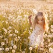 Little girl with dandelions — Stock Photo #11161734