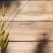 Grass on wooden background — Stock Photo
