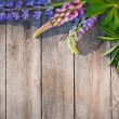 Beautiful lupines on wooden background — Stock Photo