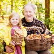 Elderly men and little girl in forest — Stock Photo