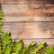 Fern leaves on wooden background — 图库照片