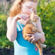 Little girl with cat outdoor — Stock Photo #11165110