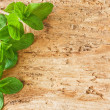 Mint on wooden background — Stock Photo