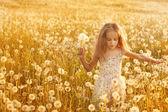 蒲公英的小女孩 — 图库照片