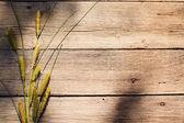 Trawa na drewniane tła — Zdjęcie stockowe