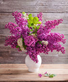 Still life with a blooming branch of lilac — Stock Photo
