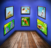 Frames with photos of nature and animals — Stock Photo