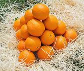 пирамида апельсины — Стоковое фото