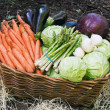 Stock Photo: Harvest of fresh vegetables