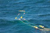 Trawl fishing — Stock Photo