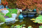 Ogród japoński wody. — Zdjęcie stockowe