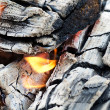 Very hot campfire close up - Stock Photo