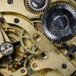 Mechanism of old watch — Stock Photo #11505165