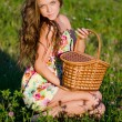 The girl sits in a grass with a basket on a sunset — Stock Photo