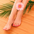 Female feet — Stockfoto